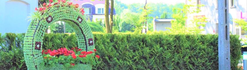 Zdjęcie przedstawia kompozycję kwiatową - kosz z pałąkiem - w rejonie Ronda pod Bocianem