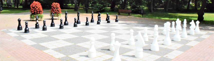 Zdjęcie przedstawia szachy plenerowe w Parku Zdrojowym, w tle drzewa