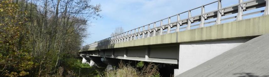 Fotografia mostu z poziomu terenu. W lewej części fotografii widoczna zieleń przydrożna. Po prawej stronie widoczny przyczółek mostu wraz z płytą pomostową i filarami (źródło: GDDKiA Katowice)